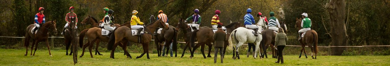 Devon & Cornwall Point-To-Point Horse Racing